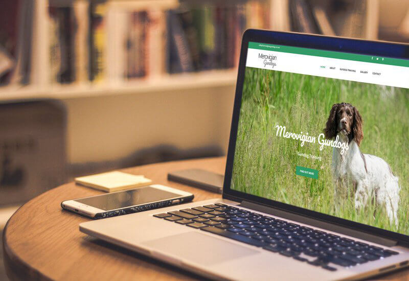 Iosys are thrilled to have worked with Merovigian Gundogs on their new website.